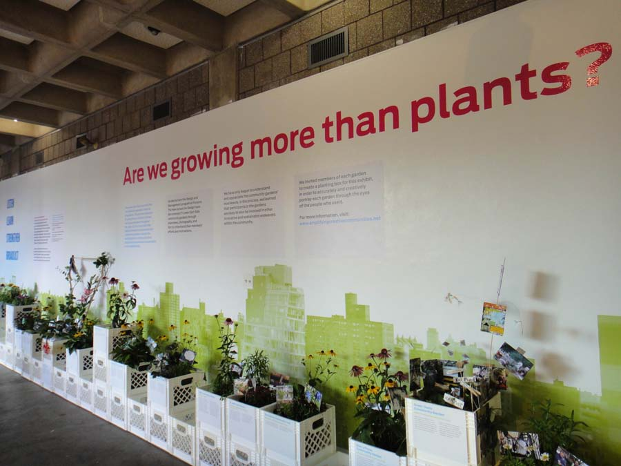 Figure 3: Overview of Section 1 of the Amplify exhibition at the Abrons Art Center with miniatures of gardens recreated for the exhibition.